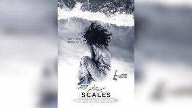 Photo of سيدة البحر .. فيلم سعودي يصل إلى العالمية عبر مهرجان