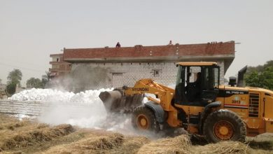 Photo of إزالة 69 حالة تعد على الأراضي الدولة بالمنيا