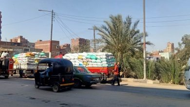 Photo of زراعة الدقهلية: توريد 49 ألف طن قمح لمواقع التخزين حتى الآن