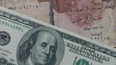 Photo of الدولار يواصل تراجعه أمام الجنيه لليوم الثاني على التوالي