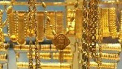 Photo of أسعار الذهب تواصل أداءها القوي عالميًا بعد تحقيق أعلى إغلاق منذ سبتمبر 2011