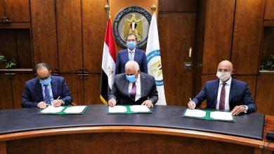 Photo of وزير البترول والثروة المعدنية: بدء خطوات توصيل الغاز الطبيعى إلى الوادى الجديد لأول مرة