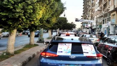 Photo of مصرع طفل دهسته سيارة دعاية انتخابية لمرشح في انتخابات «النواب» بالمنوفية