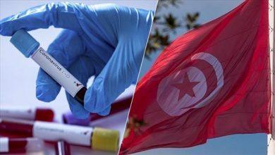 Photo of تونس تسجل 64 حالة وفاة و1784 إصابة جديدة بكورونا خلال 24 ساعة