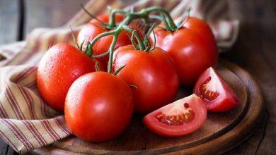 Photo of متحدث سوق العبور يكشف أسباب ارتفاع سعر الطماطم وتوقيت انخفاض أسعارها (فيديو)