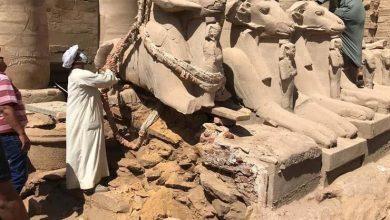 Photo of وزير السياحة يشهد إعادة ترميم كباش معبد الكرنك بالأقصر السبت المقبل