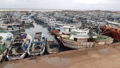 Photo of استئناف حركة الصيد بميناء البرلس بعد توقفها يومين لسوء الأحوال الجوية