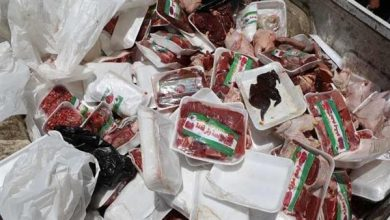 Photo of الداخلية تضبط 1290 قضية تموينية من بينها أكثر 22 طن دواجن وأسماك فاسدة